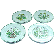 12 Wildflower Dessert or Salad Plates by Johnson Bros. for Tiffany, England