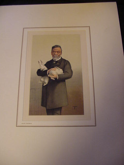 Reproduction of 19th C. Print of Louis Pasteur
