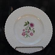"Royal Cauldon Bristol Ironstone Norbury ""Pimpernet"" Plate, England"
