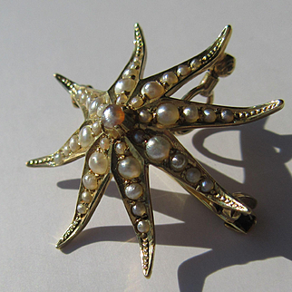 14kt Yellow Gold Vintage Seed Pearl Star Fish Brooch/Pendant