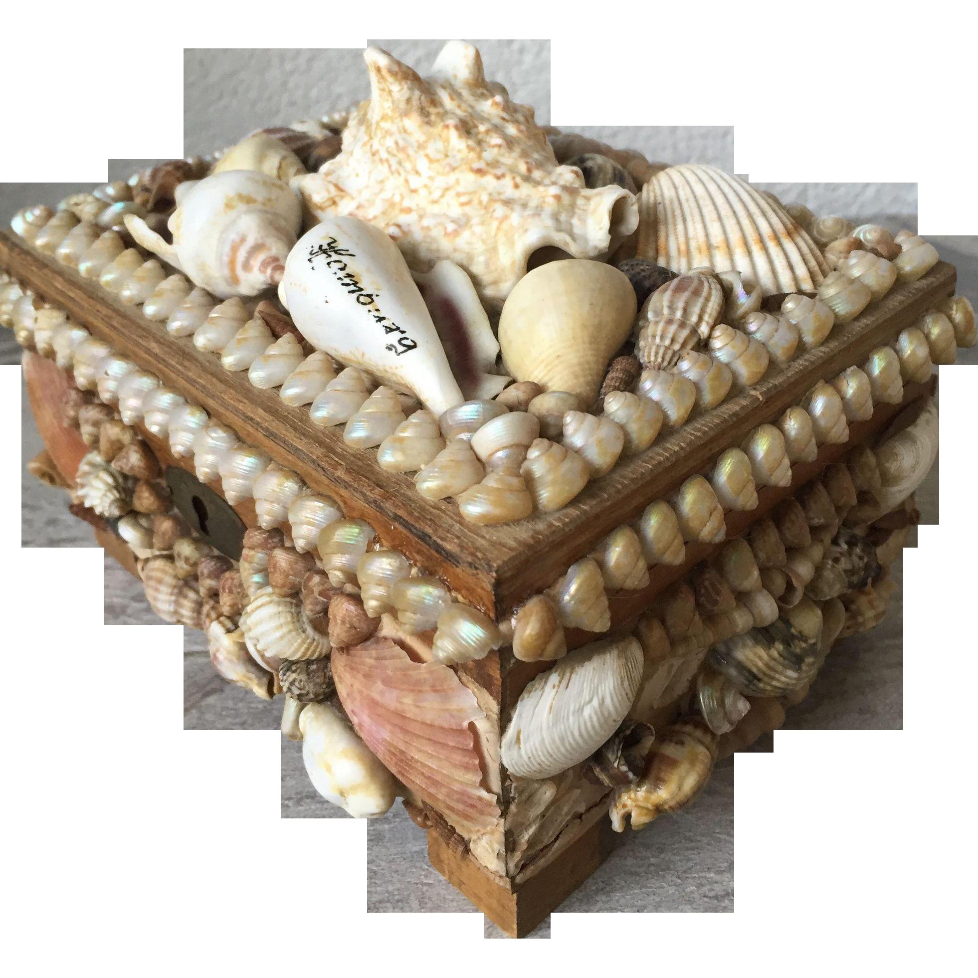 shells jewelry box 28 images seashell jewelry box boardwalk