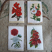 LOT Early 1900 Floral Cigarette Silk Litho Prints ~ Red Flowers