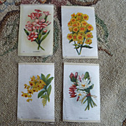 LOT Early 1900 Floral Cigarette Silk Litho Prints ~ Various
