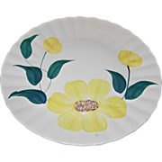 Sunny Pattern 10 ¼ Inch Dinner Plate by Blue Ridge Southern Potteries