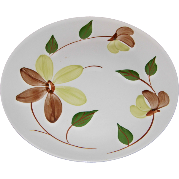 Desert Spring Pattern Dinner Plate by Blue Ridge Southern Potteries