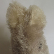 Little Old Straw Stuffed Rabbit