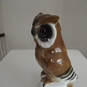 Porcelain Glass Eyed  Owl Standing On Books