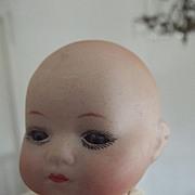 Tiny Herm Steiner Baby