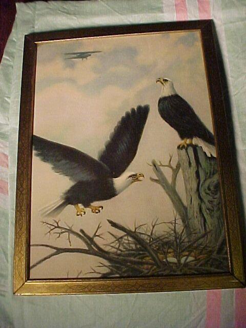 Vintage Eagle Print