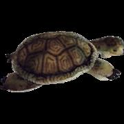Steiff Turtle