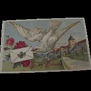 Edwardian Valentine Post Card