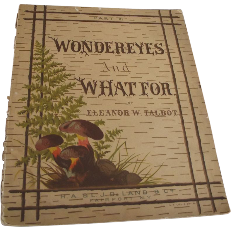 Wonder-Eyes And What For