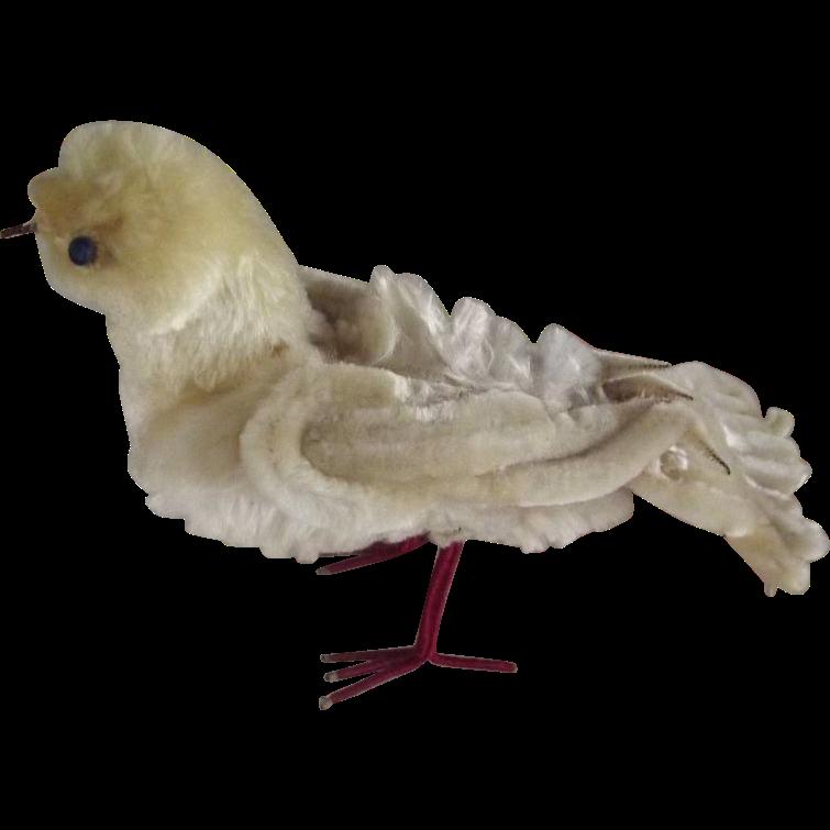 Chenille Bird