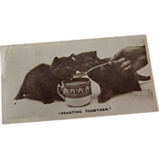 """De Reszke"" Cigarette Advertising  Photo Papers With Cats"