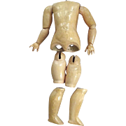Large German Ball Jointed Body