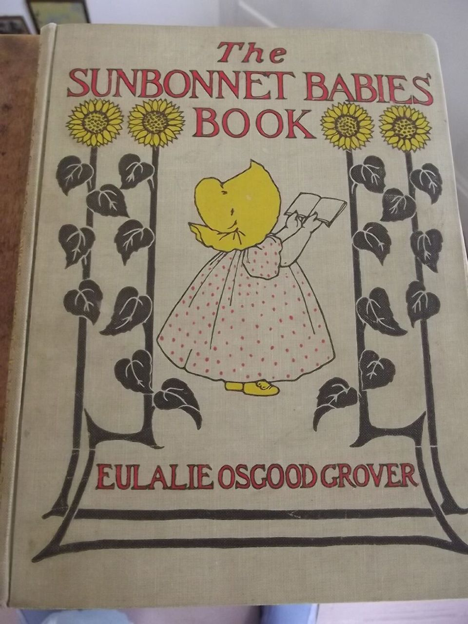 The Sunbonnet Babies Book