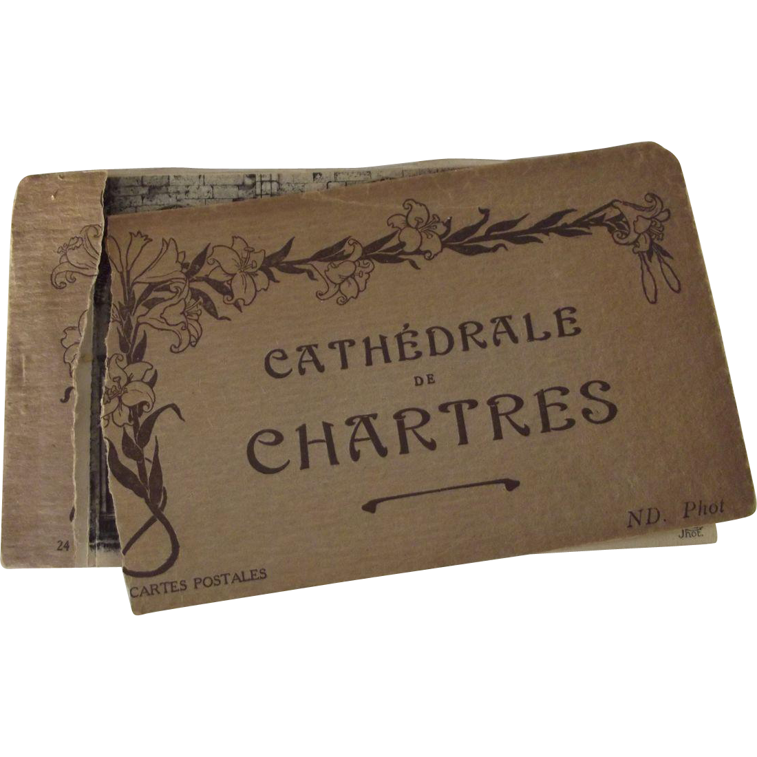 Art Nouveau Postcard Book Cathedrale Chartres