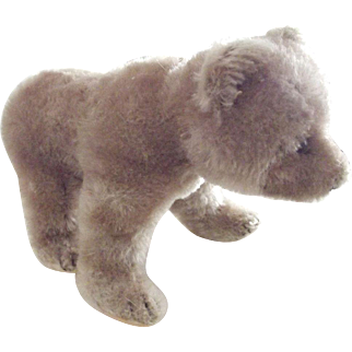 Mohair Bear On All Fours