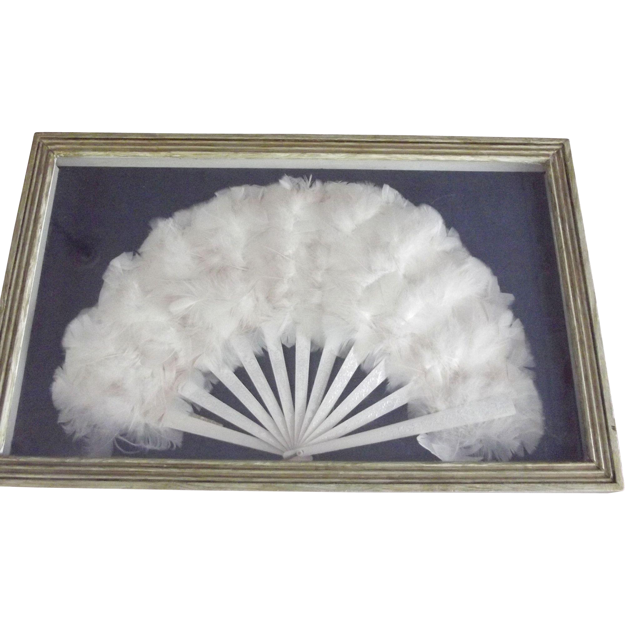 Framed Feather Fan In Shadow Frame