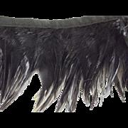 Vintage Black Feather TRim