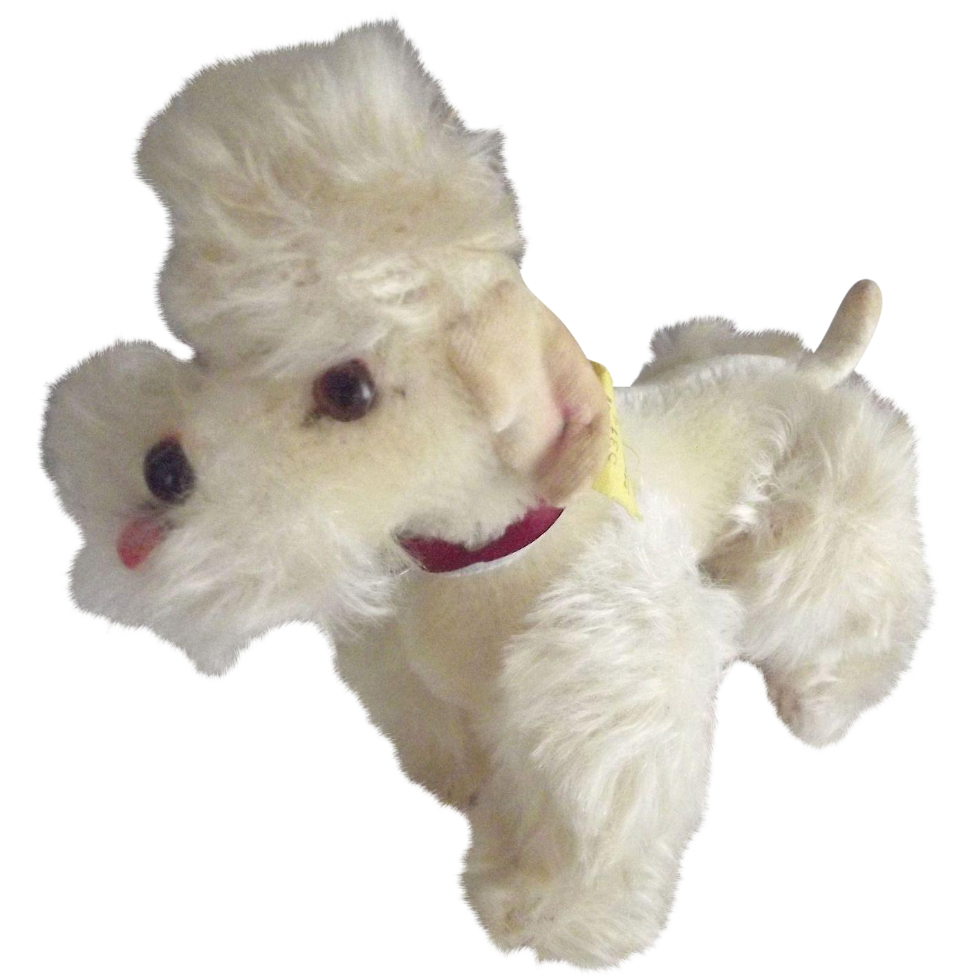 Steiff Poodle Snobby All ID's Present