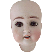 ABG Doll Head Sweet Nell 1362