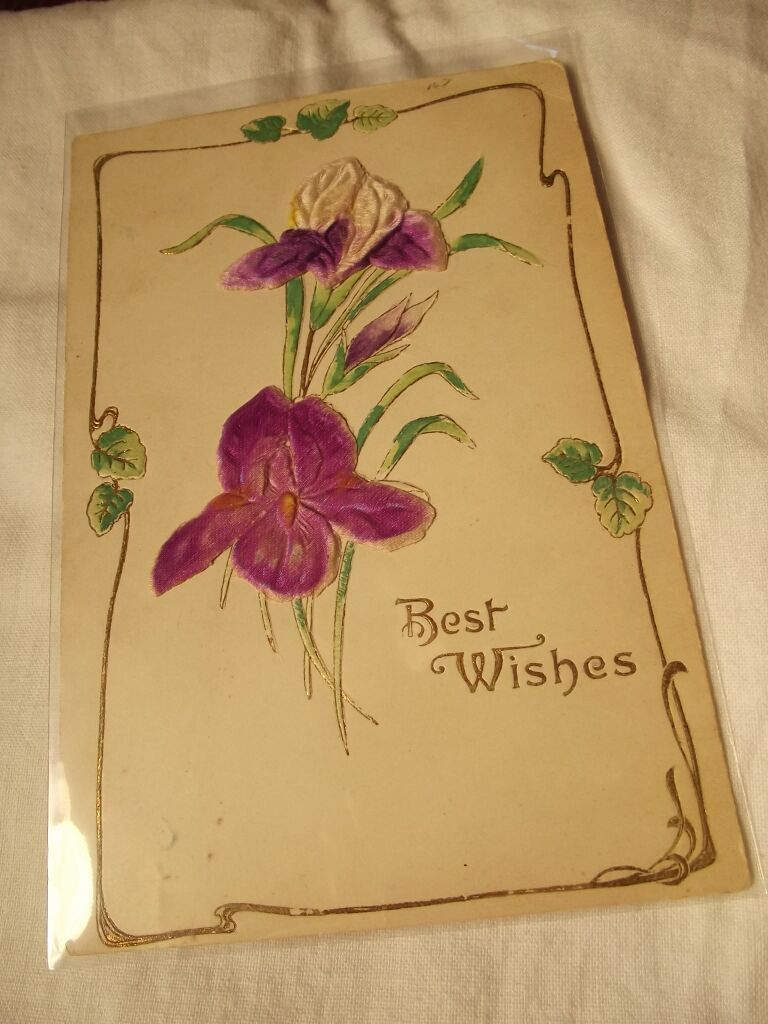 Raised Design 1900s Postcard From Fhtv On Ruby Lane