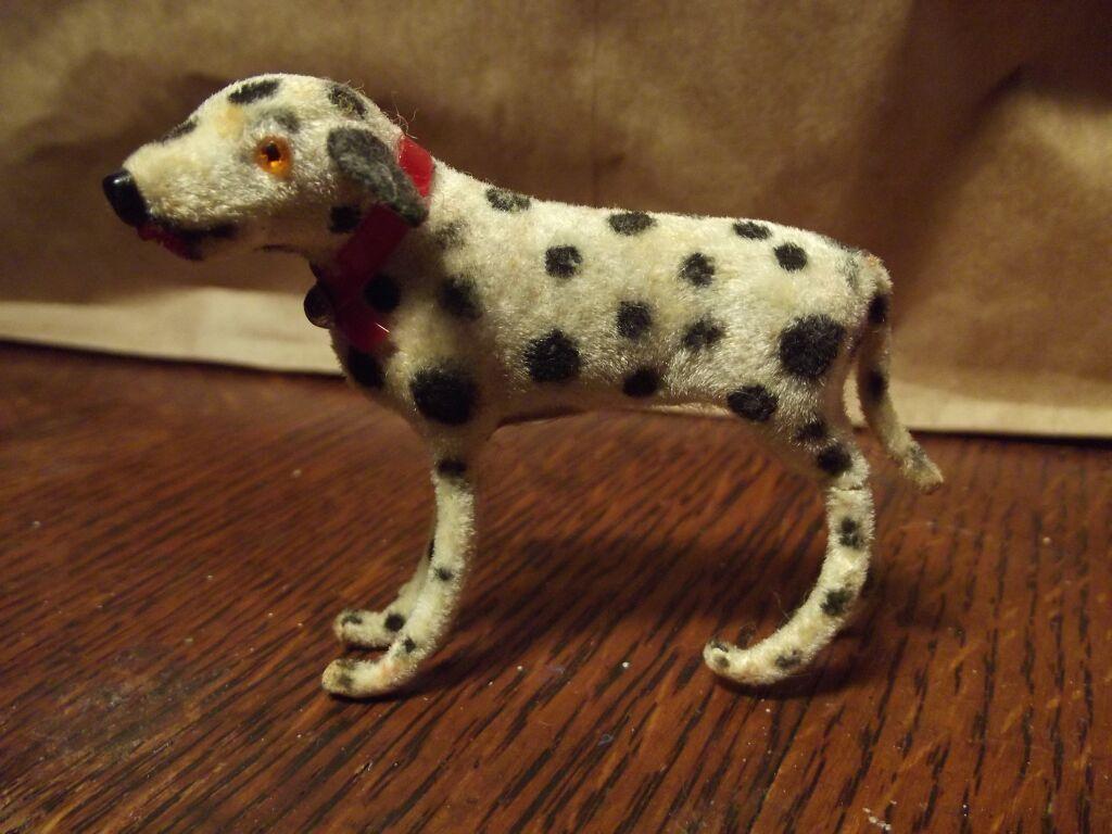 Tiny Dalamation Dog  Western Germany