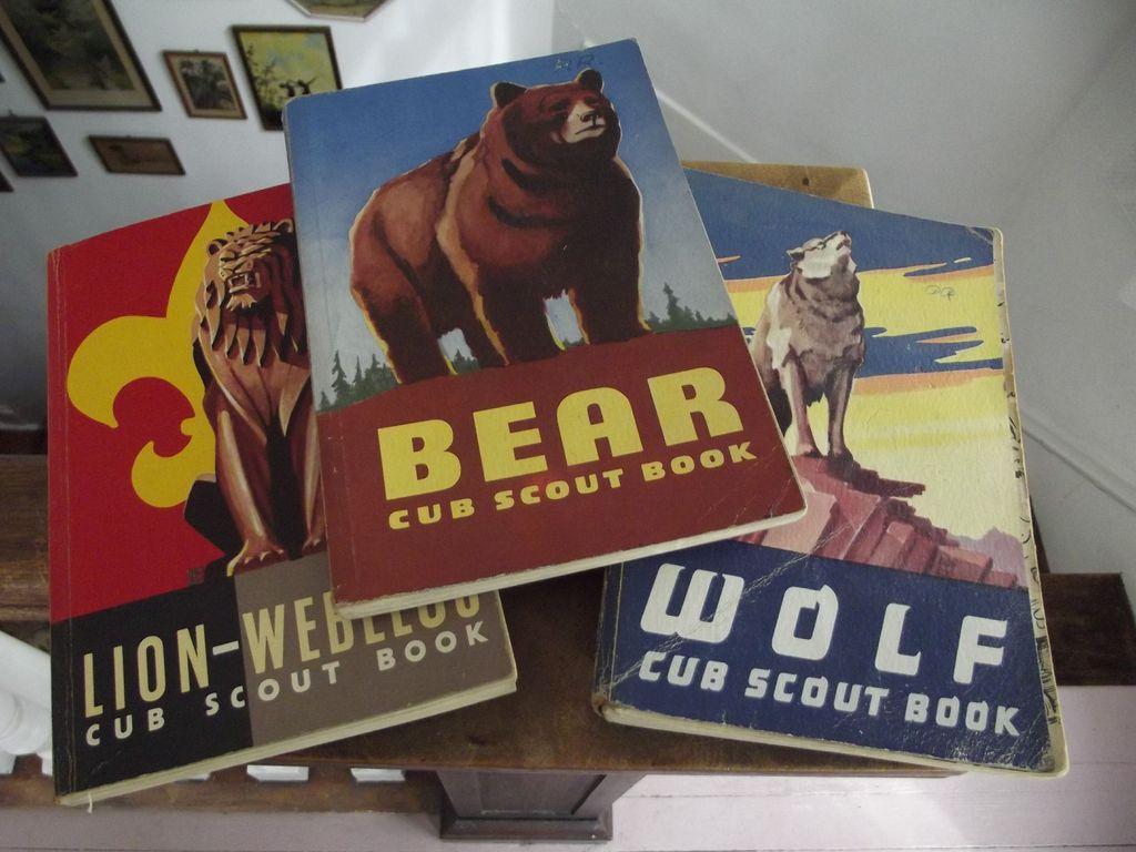 Three Vintage Scout Books