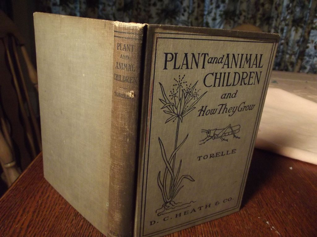 Plant and Animal Children and How They Grow