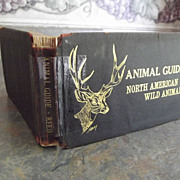 Animal Guide North American Wild Animals