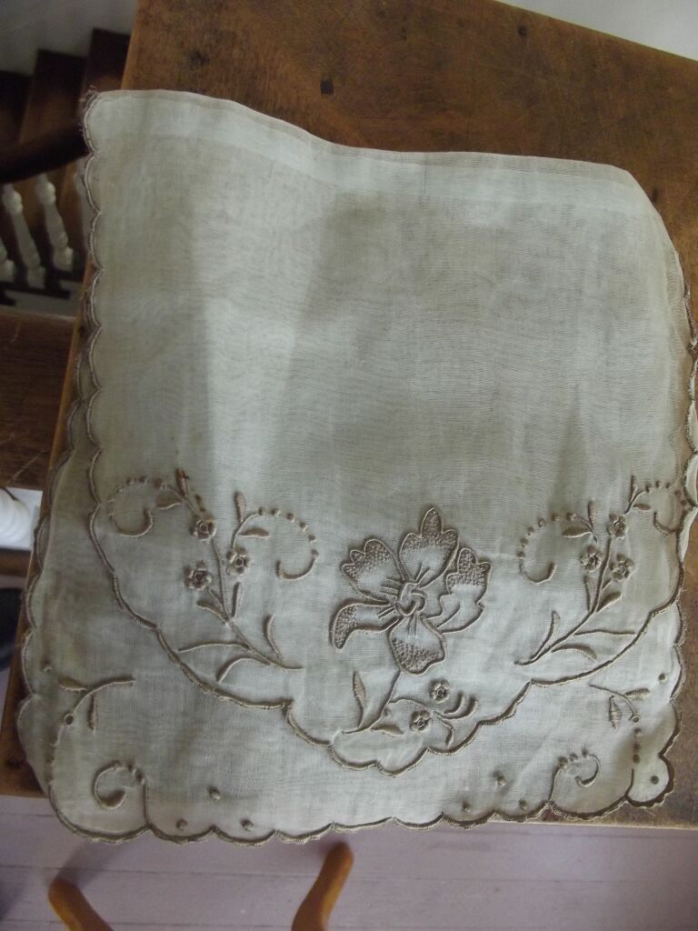 Fancy Organdy Holder With Embroidery