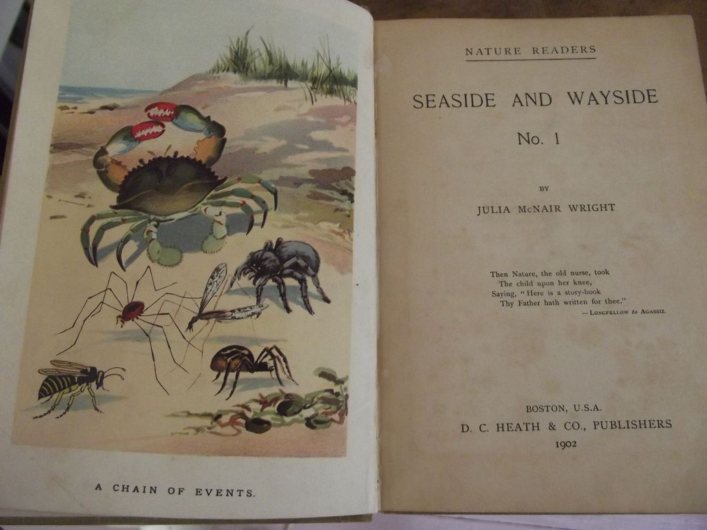 Seaside And................Wayside