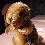 Steiff Beaver