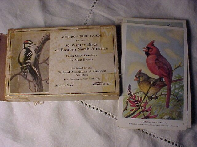 Lot of 47 Allen Brooks Audubon Cards