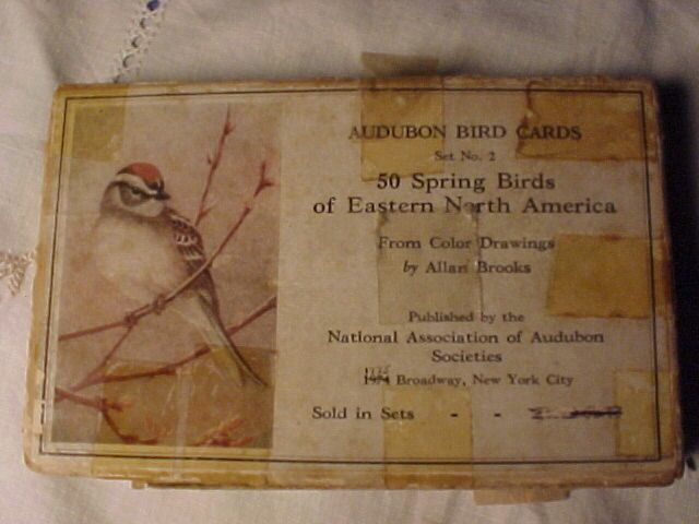 Allen Brooks Audubon Cards