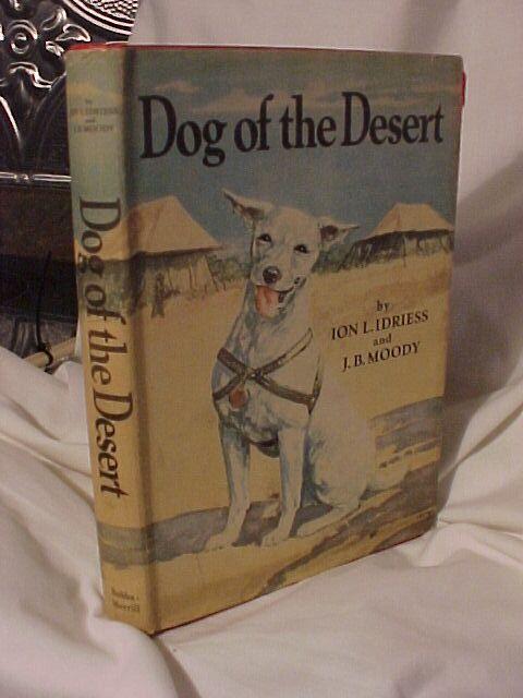 Dog of the Desert