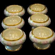 Austrian hand painted roses set of six pedestal salt dips
