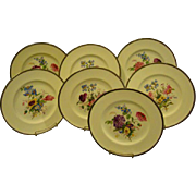 Wedgwood set of seven hand painted floral dinner plates artist signed A Holland