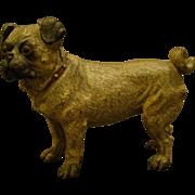 Austrian cold painted bronze pug dog sculpture