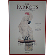 Taschen Edward Lear The Parrots box set of 42 fine art bird prints