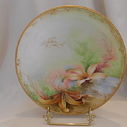 Wonderful Ginori Handpainted Sea Life Plate; Starfish & Fern Coral; P.Brogi