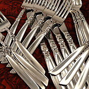 Oneida Community SOUTH SEAS Vintage 1955 Silver Plate Flatware Silverware Set Dinner Service for 4 or 8