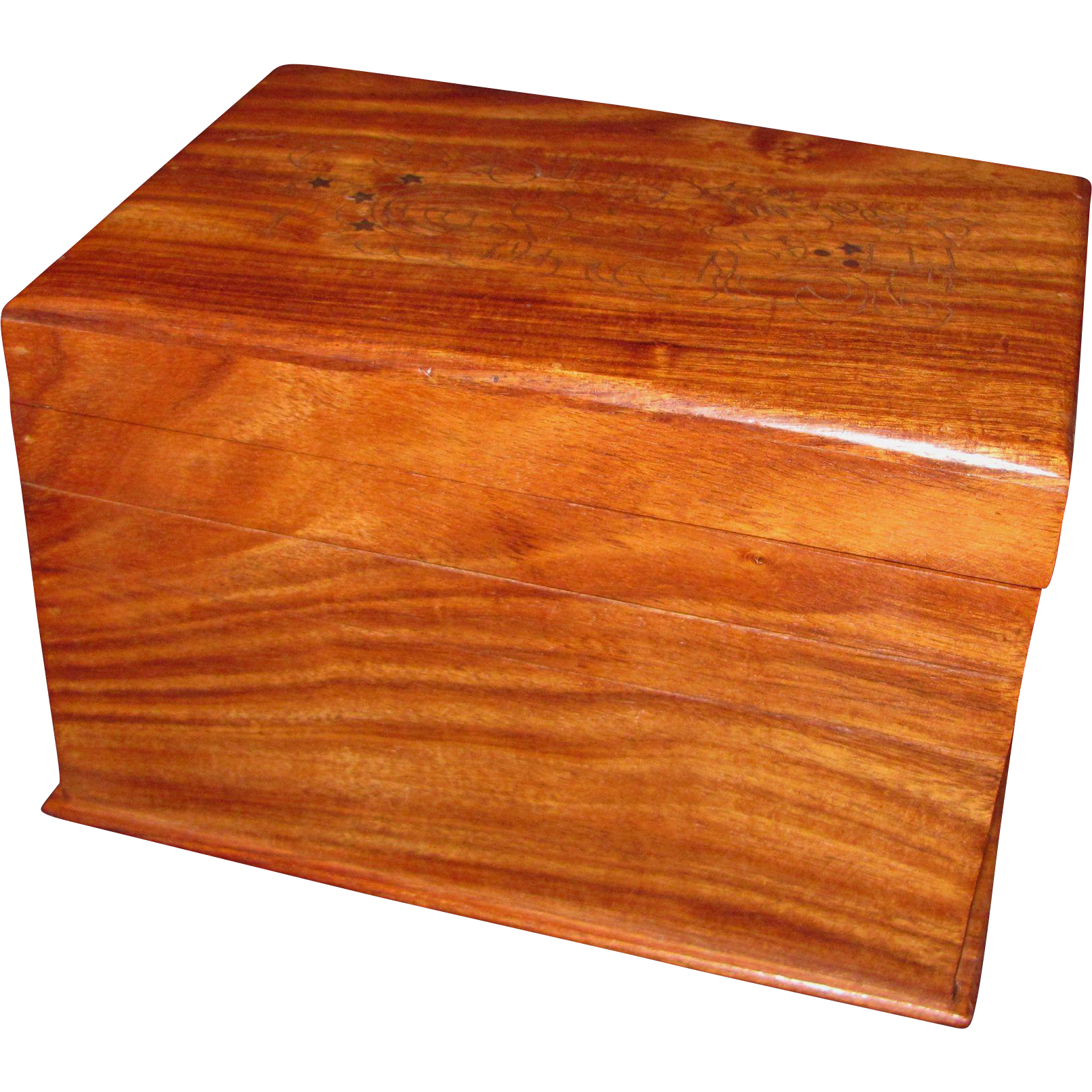Antique Anglo-Indian Padauk Wood Box 19th Century