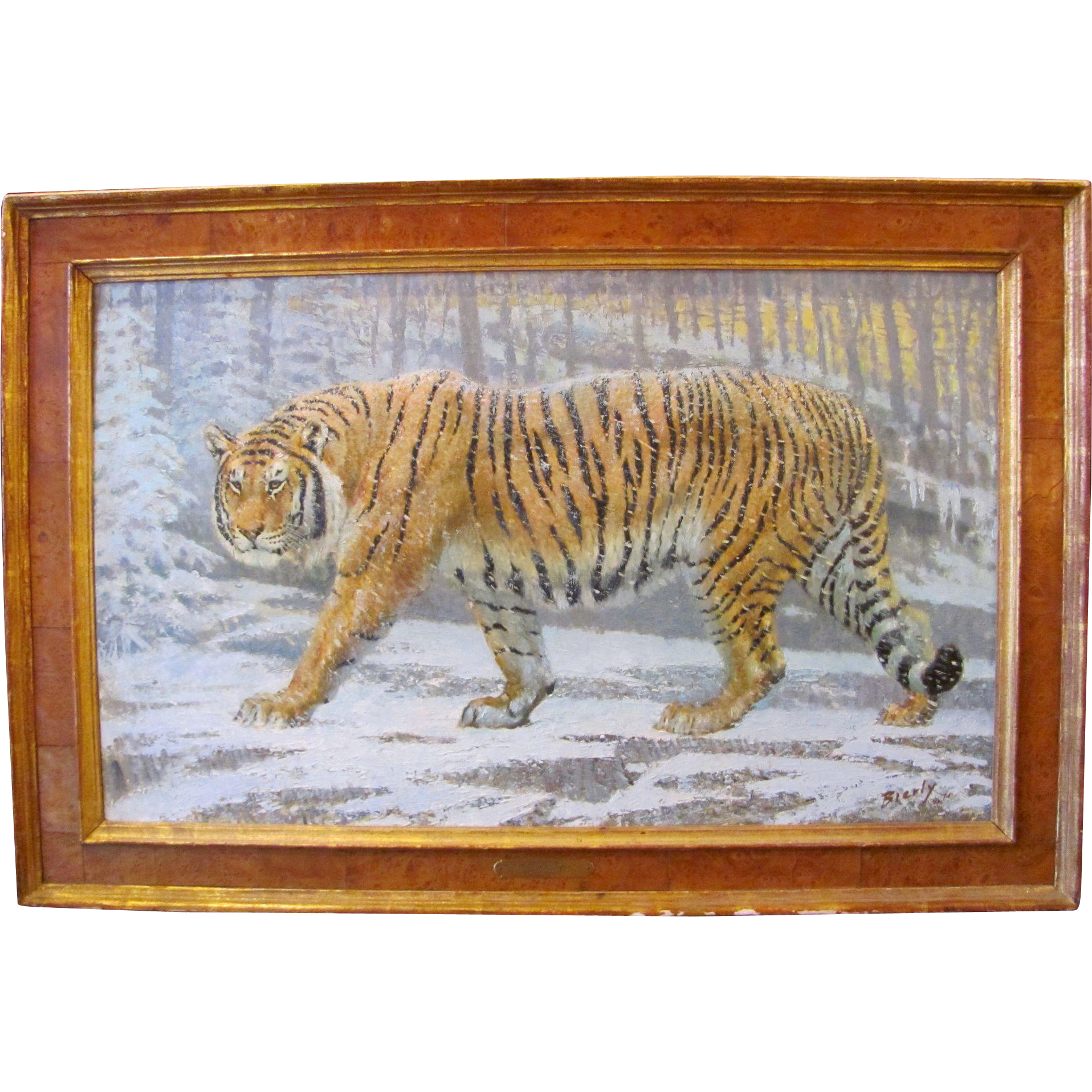 1974  Edward J.  Bierly Oil On Board Painting Titled Siberian Tiger