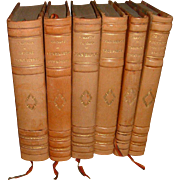 Vintage French Leather Books 6 Volumes