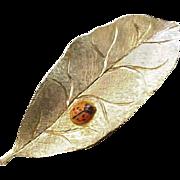 Lady Bug on a Leaf Pin