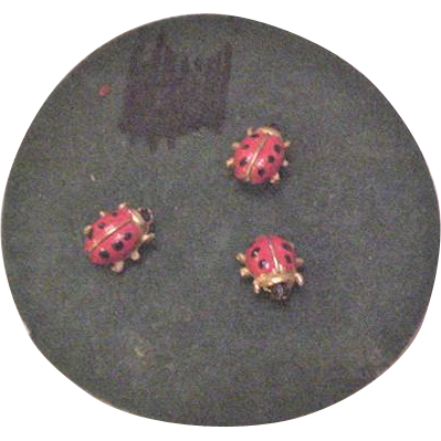 Lady Bug Tac Pins on Original Card