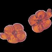 Carved Amber Earrings