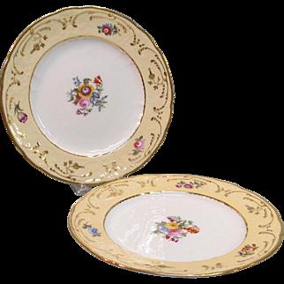 Pair English Floral Plates ca. 1840
